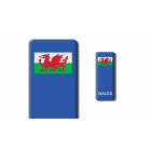3D Gel Badge - Wales Badge - Self adhesive