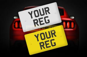 Your Reg on Red Mustang
