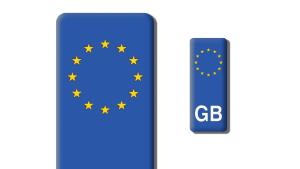 GB Number Plate Sticker