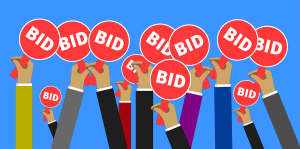 DVLA Auction Bidding