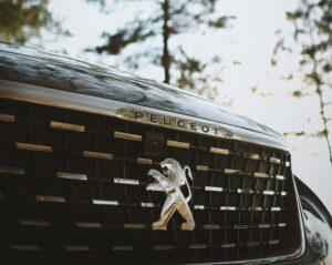 Peugeot Number Plates Area